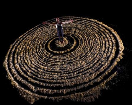 Image programmation L'utopie des arbres
