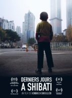 Affiche du film DERNIERS JOURS A SHIBATI